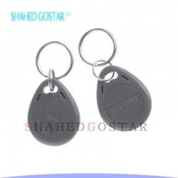 تگ RFID (طوسی)